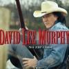 David Lee Murphy vydá po 14 letech nové album